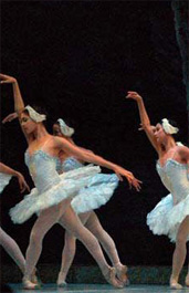Cuban National Ballet Information